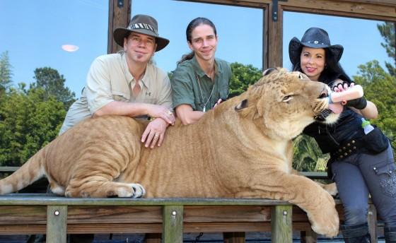 Liger, Doc, Kody, and Rajani